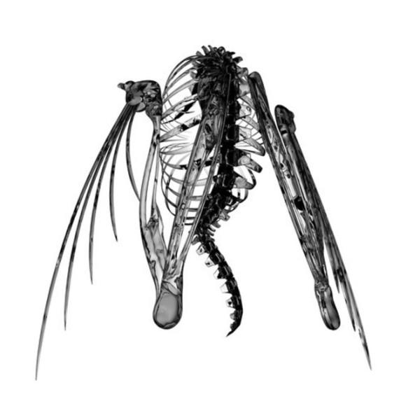 heterocetera